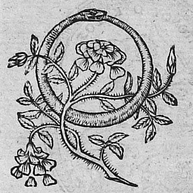 Barthélemy Aneau, Picta Poesis, 1552